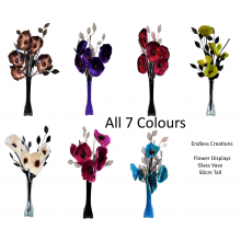 50cm Poppy Display - All 7 Colours